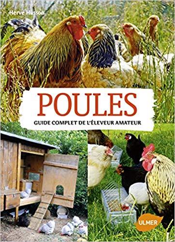 poules guide complet - Comment élever des poules pondeuses pour avoir des œufs frais