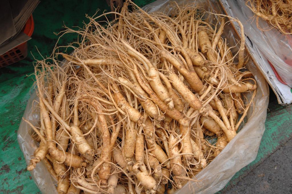 ginseng 2920722118 3c60db24d1 b - 5 plantes pour lutter contre le coup de fatigue et le stress