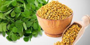 fenugrec 300x150 - 5 meilleures plantes pour lutter contre le diabète de type 2