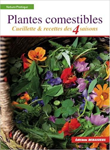 PLANTES COMESTIBLES - 4 plantes sauvages comestibles à découvrir dans nos sous-bois