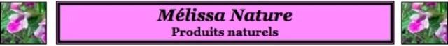 Mélissa Nature Produits naturels - Les feuilles de basilic amies aromatiques de notre estomac